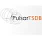 Pulsar Time Series Data Base