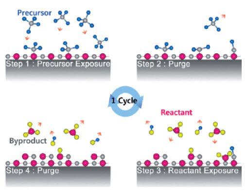 Rys. 3. Schematyczne przedstawienie jednego cyklu w procesie atomowego osadzania warstwy (ALD)