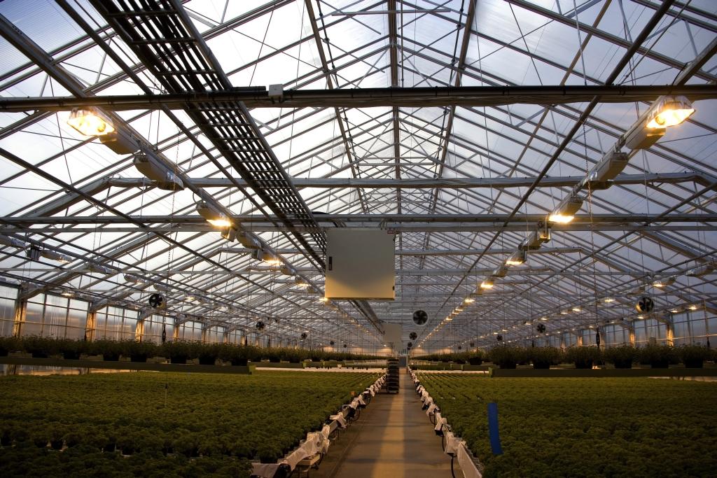 Unikatowe rozwiązania w sektorze oświetlenia LED