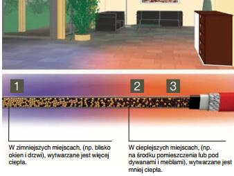 samoregulacja_zyly_zasilajace