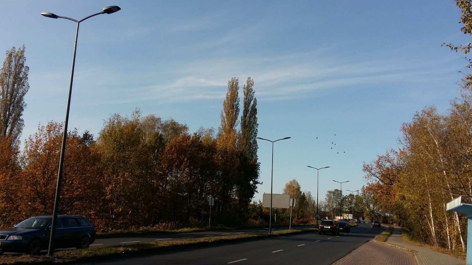 Oświetlenie uliczne w Rybniku