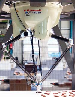 Robot YF003N w ultraszybkiej aplikacji pakowania batoników (130 szt./min)