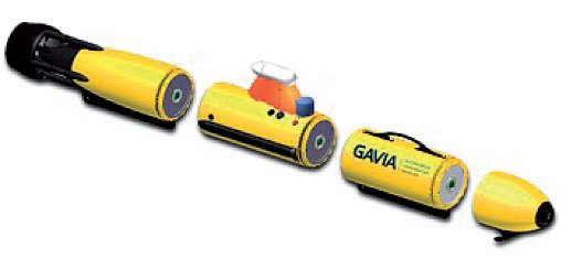 Rys. 4. Modułowa konstrukcja pojazdów Gavia